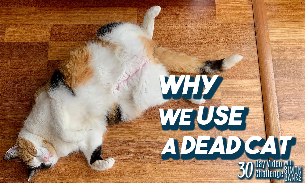 Why we use dead cats